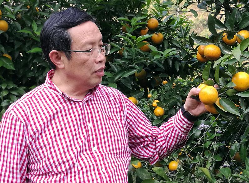 湖南农业大学2020年年度人物(团体)